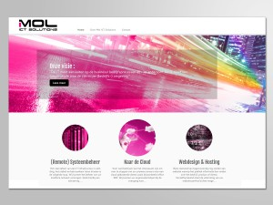 Mol ICT Solutions website